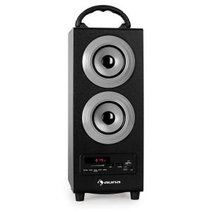 Beachboy Bluetooth-Lautsprecher USB SD AUX UKW/MW silber Silber | L